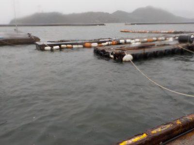 台風による出港停止のお知らせ |...