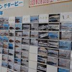 広島ベイマリーナフィッシングダービー2020 中間報告!その1